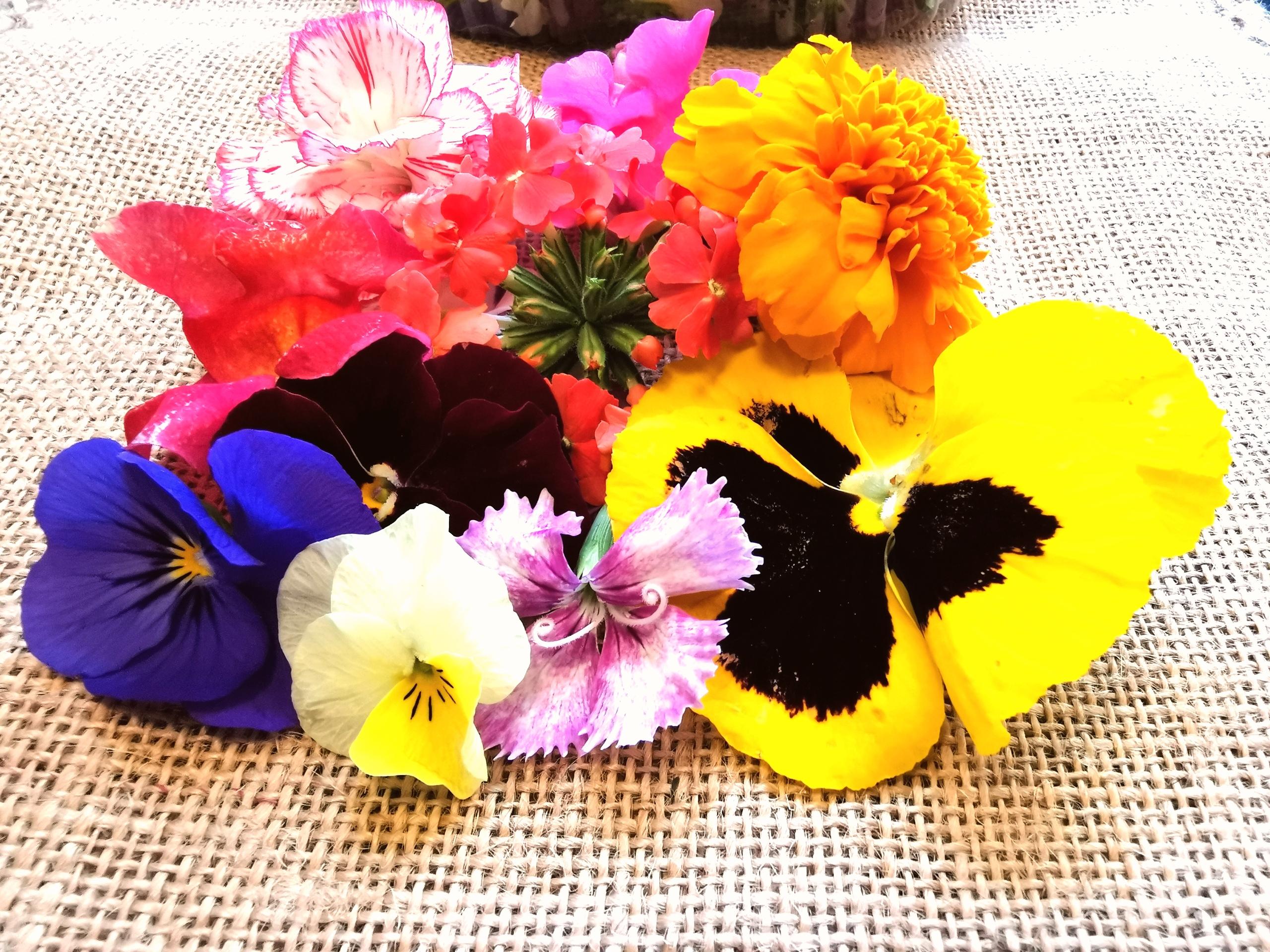 Spiselige blomster fra Middelhavsområdet